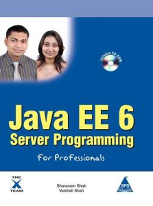 Java EE 6 Server Programming For Professionals